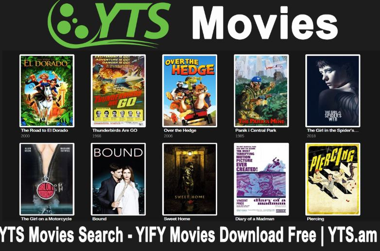 YTS MOVIE SEARCH
