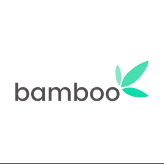 IS BAMBOO INVESTMENT LEGIT OR A SCAM?